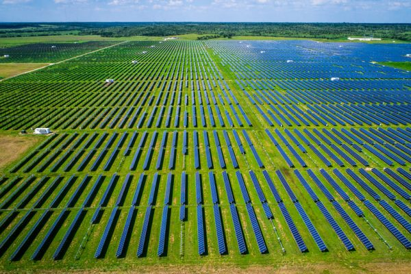 Parque fotovoltaico sobre suelo (Montalto)